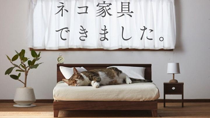 Okawa-Kagu