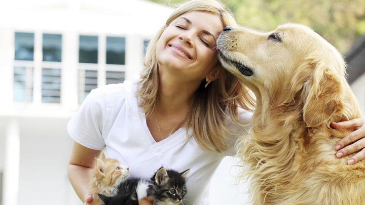 seguros-mascotas
