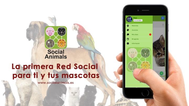 social-animals-app