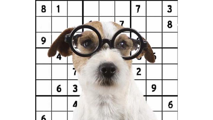sudokus-perros