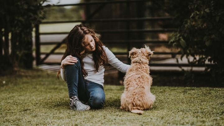vacunas-perros
