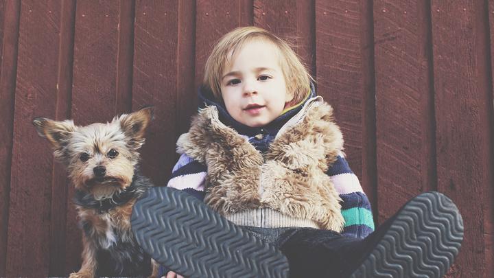 perros-bebe