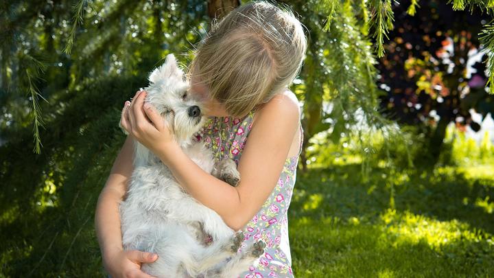 razas-perro-ninos
