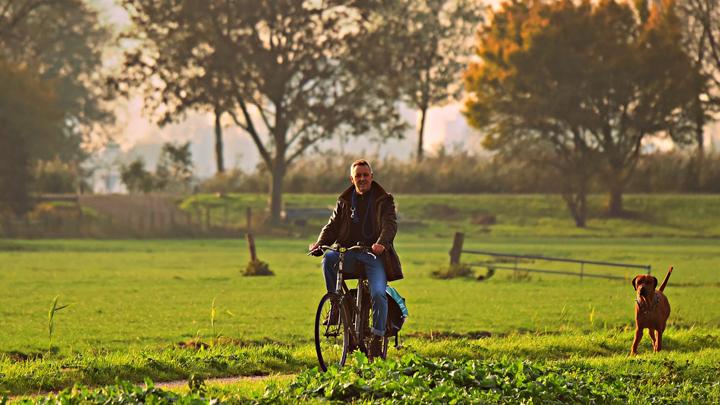 bikerjoring
