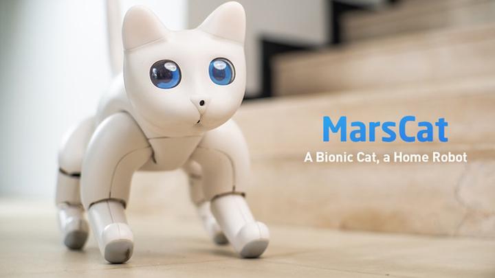gato-robotico