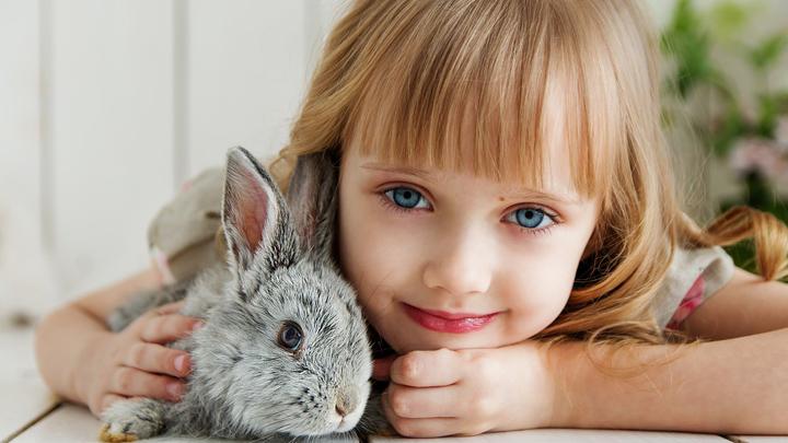 alimentacion-conejo