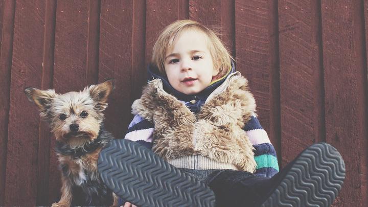 hogar-mascotas